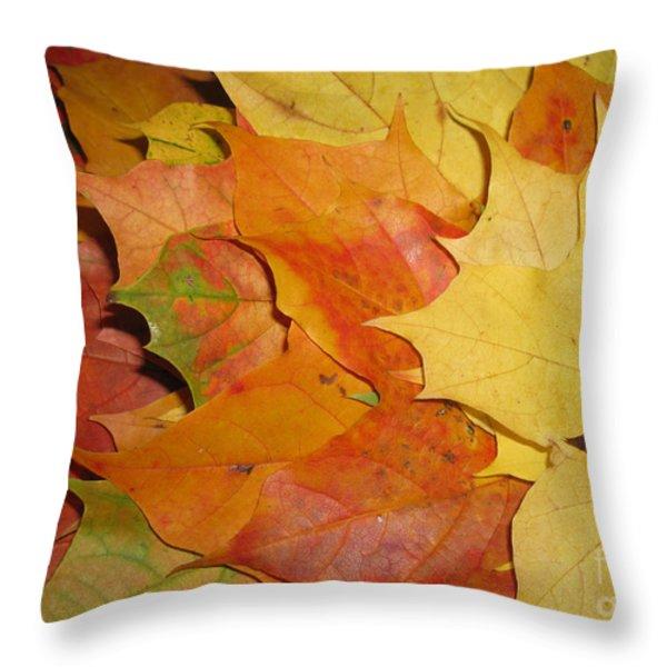 Maple Rainbow Throw Pillow by Ausra Paulauskaite