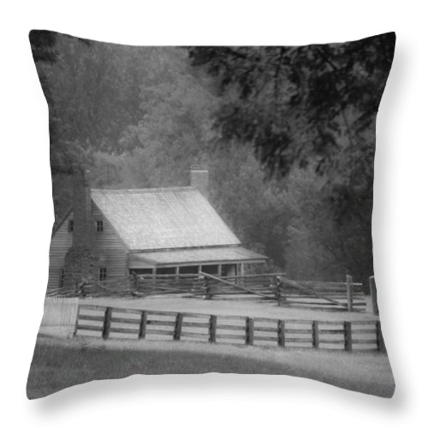 Mariah Wright House Appomattox Virginia Throw Pillow by Teresa Mucha