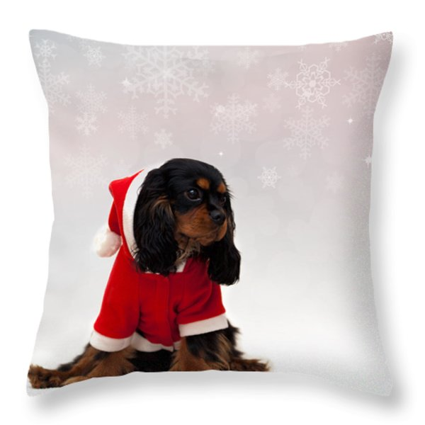 Marmaduke on snow background Throw Pillow by Jane Rix