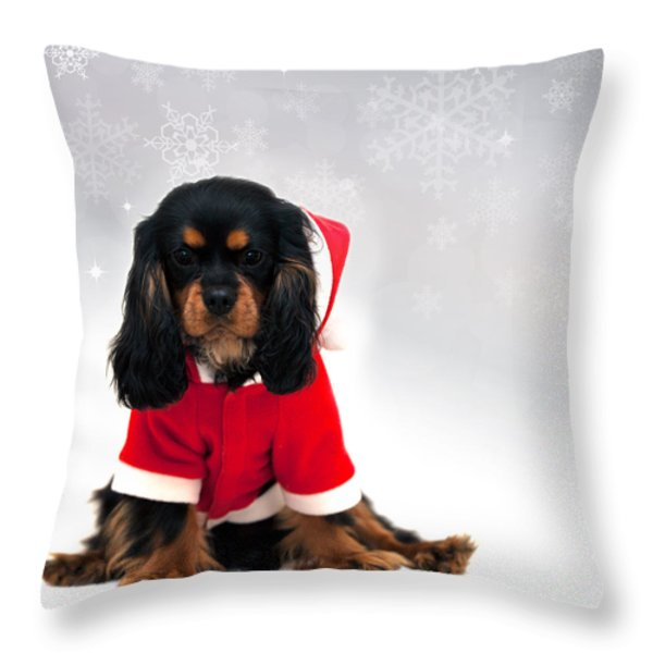 Marmaduke with snowflake background Throw Pillow by Jane Rix