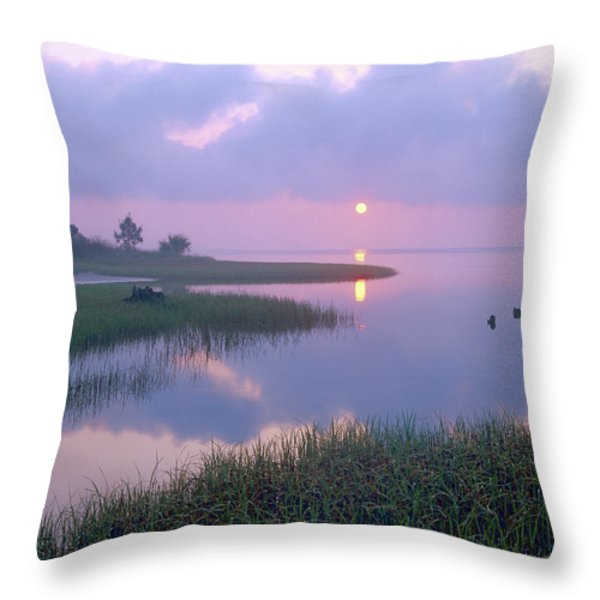 Marsh At Sunrise Over Eagle Bay St Throw Pillow by Tim Fitzharris