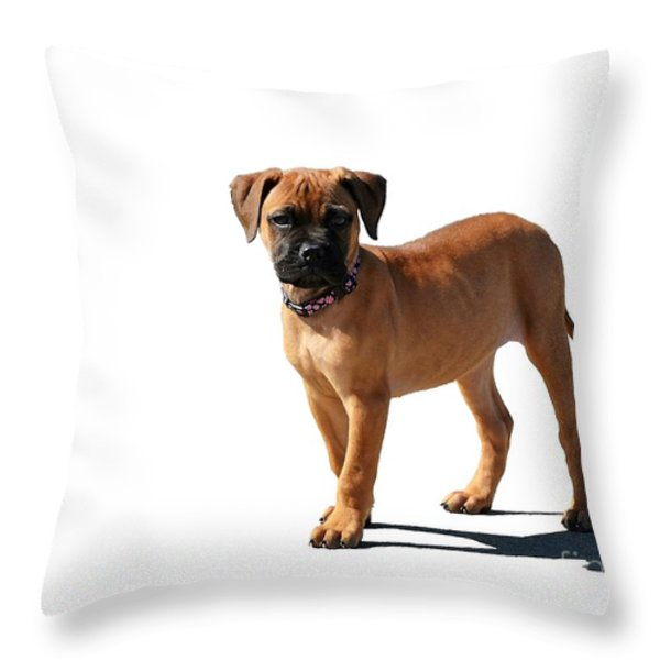 Me And My Shadow 2 Throw Pillow by Dale   Ford