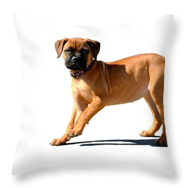 Me And My Shadow 3 Throw Pillow by Dale   Ford