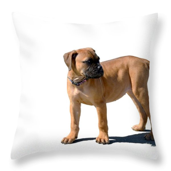 Me And My Shadow 4 Throw Pillow by Dale   Ford