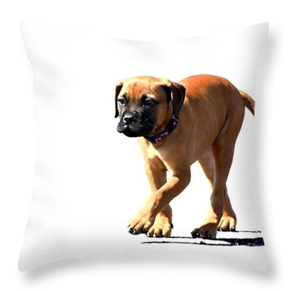 Me And My Shadow 5 Throw Pillow by Dale   Ford