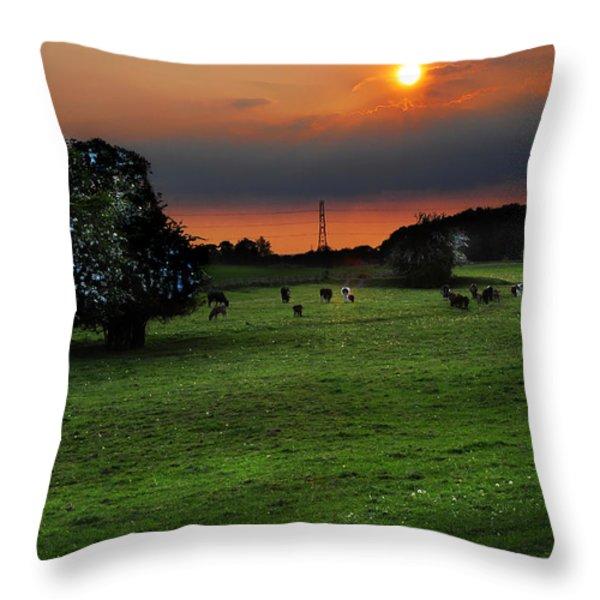 Meadow Field Throw Pillow by Svetlana Sewell