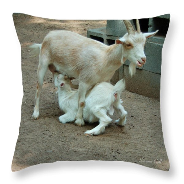 Mealtime Throw Pillow by Suzanne Gaff