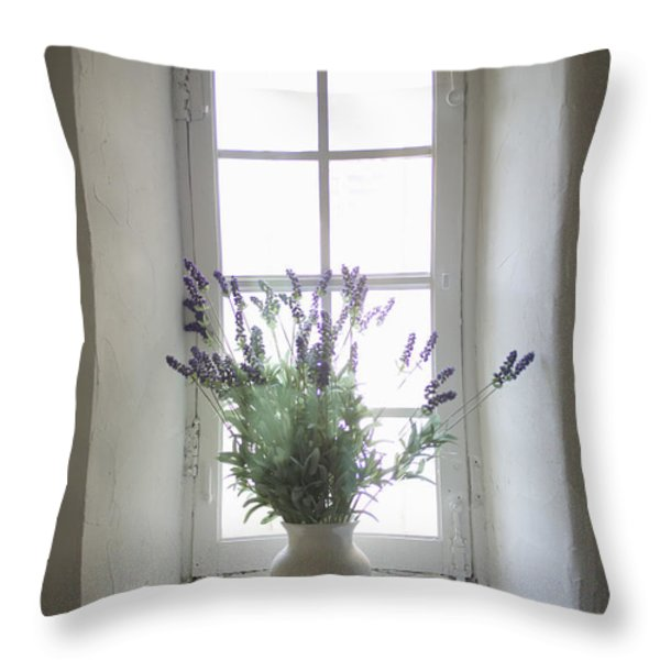 Mediterranean Coast In Provence Throw Pillow by Huy Lam