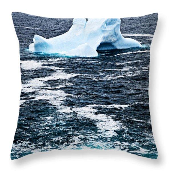 Melting Iceberg Throw Pillow by Elena Elisseeva