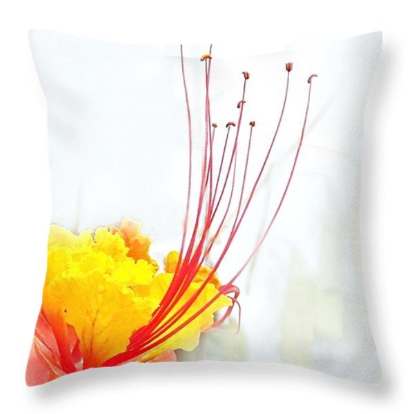 Mexican Bird Of Paradise Throw Pillow by Kume Bryant
