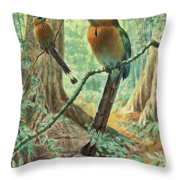 Mexican Motmots Are Perched On Jungle Throw Pillow by Walter A. Weber