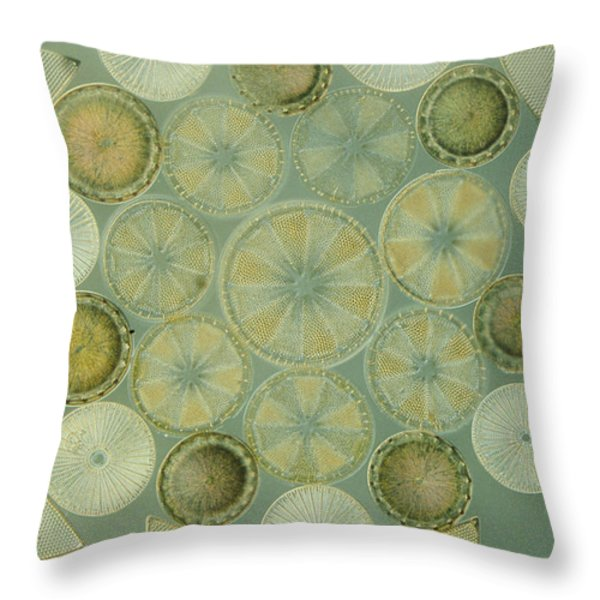 Microscopic Arrangement Throw Pillow by Darlyne A. Murawski