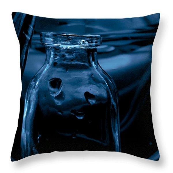 Midnight Throw Pillow by Bonnie Bruno