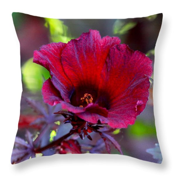 Midnight Romance Throw Pillow by Karon Melillo DeVega