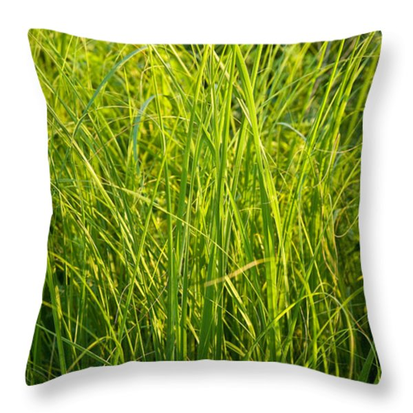 Midwest Prairie Grasses Throw Pillow by Steve Gadomski