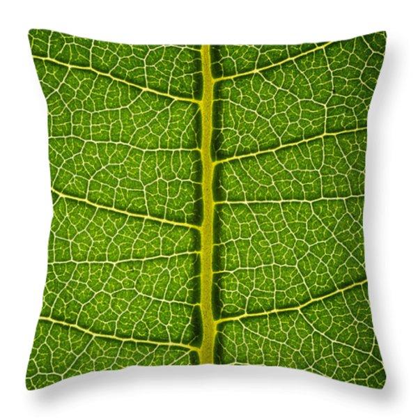 Milkweed Leaf Throw Pillow by Steve Gadomski