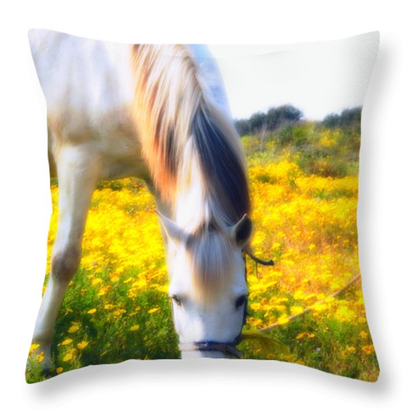 Mirage Throw Pillow by Stylianos Kleanthous