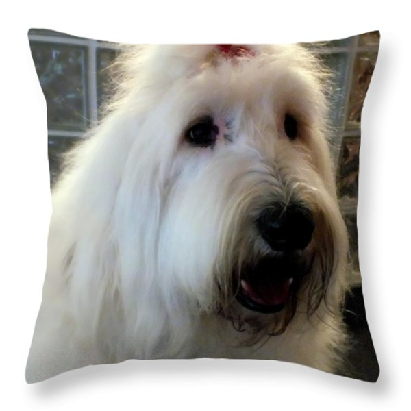 Miss Daisy May Throw Pillow by Karen Wiles