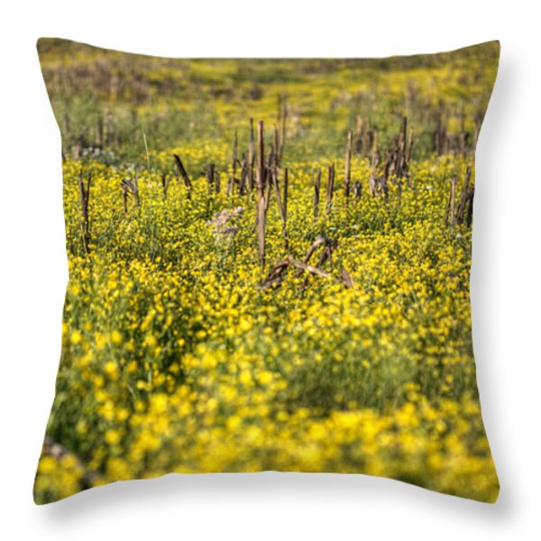 Missing You Throw Pillow by JC Findley