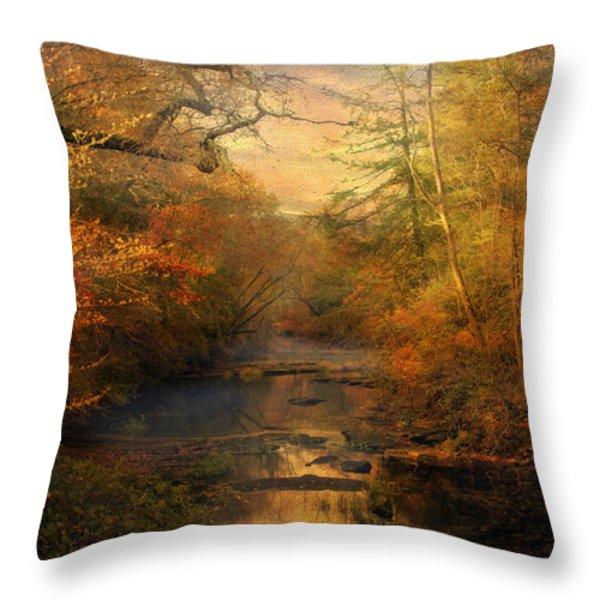 Misty Autumn Morning Throw Pillow by Jai Johnson