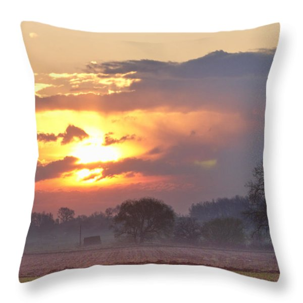 Misty Country Sunrise  Throw Pillow by James BO  Insogna