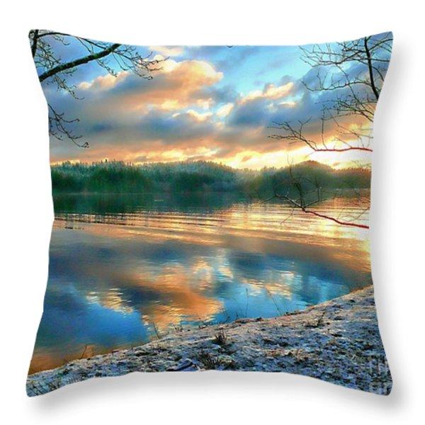 Misty Morning Throw Pillow by Gail Bridger