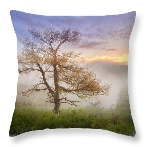 Misty Mountain Throw Pillow by Debra and Dave Vanderlaan