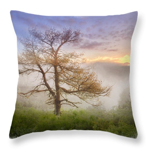 Misty Mountain Throw Pillow by Debra and Dave Vanderlaan