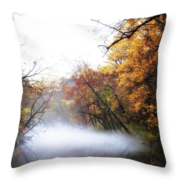Misty Wissahickon Throw Pillow by Bill Cannon
