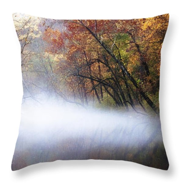 Misty Wissahickon Creek Throw Pillow by Bill Cannon