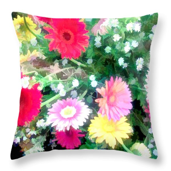 Mixed Asters Throw Pillow by Elaine Plesser
