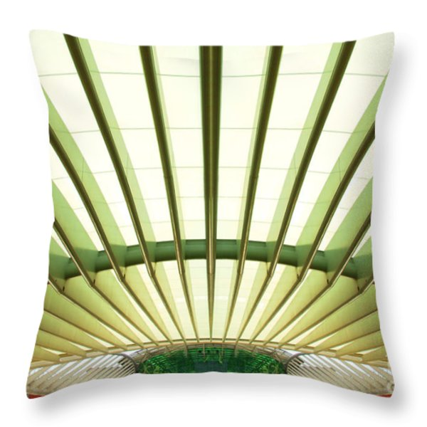 Modern Architecture Throw Pillow by Carlos Caetano
