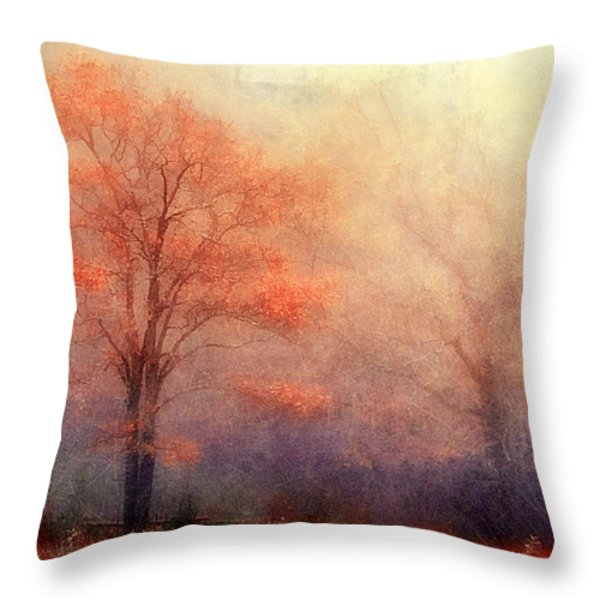 Moods Of Autumn Throw Pillow by Darren Fisher
