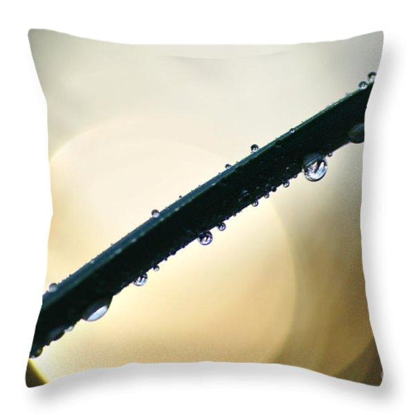 Moon Drops Throw Pillow by Kaye Menner