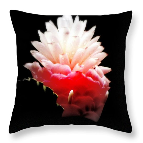 Moonlight Glow Throw Pillow by KAREN WILES