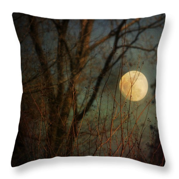 Moonrise Throw Pillow by Jai Johnson
