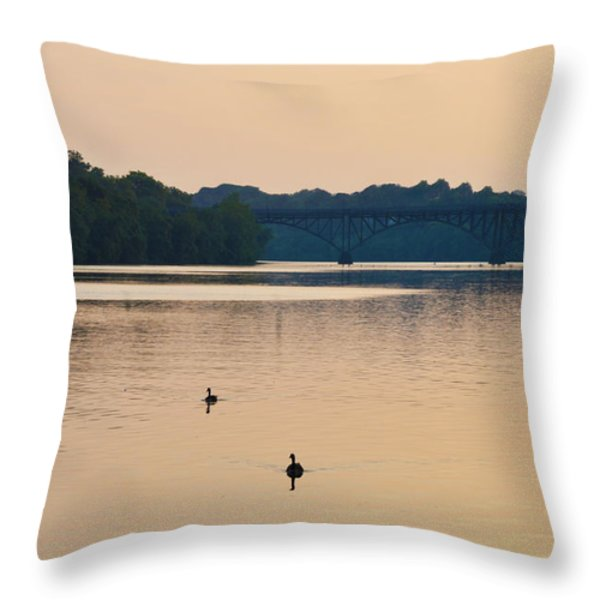 Morning Along the Schuylkill River Throw Pillow by Bill Cannon