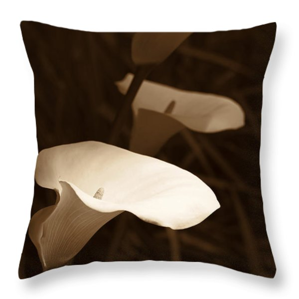 Morning Calla Lilies Sepia Throw Pillow by Jennie Marie Schell