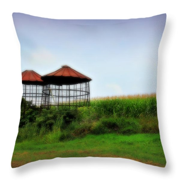 Morning Corn Throw Pillow by Perry Webster