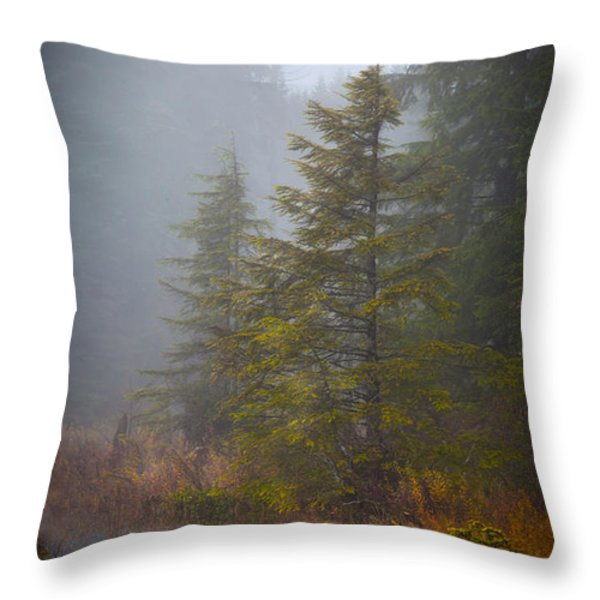Morning Fall Colors Throw Pillow by Mike Reid