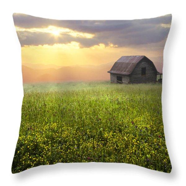 Morning Has Broken Throw Pillow by Debra and Dave Vanderlaan