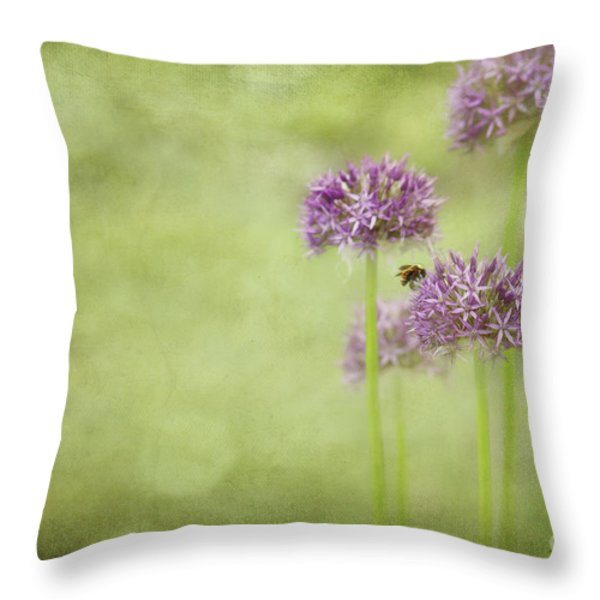 Morning in the Garden Throw Pillow by Reflective Moment Photography And Digital Art Images