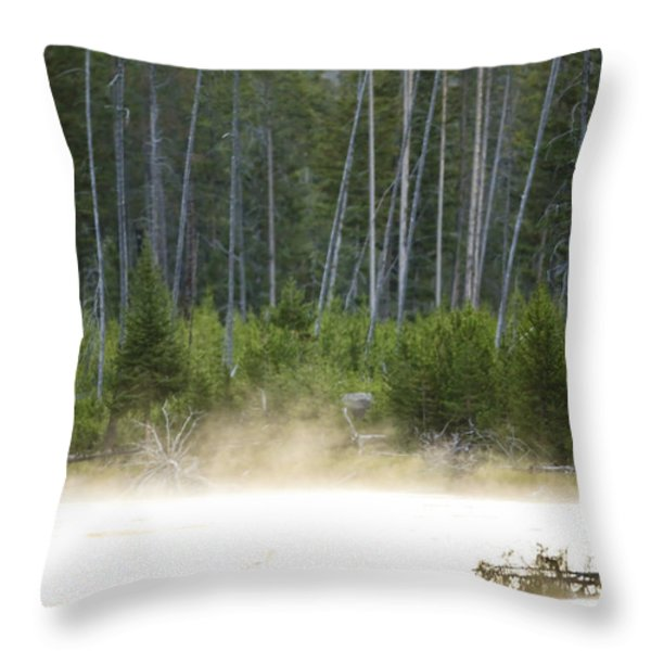 Morning Meditation On The Madison Throw Pillow by Drew Rush