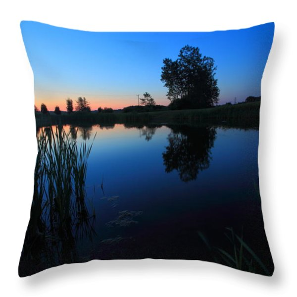 Morning Pond In Blue Throw Pillow by Jiayin Ma