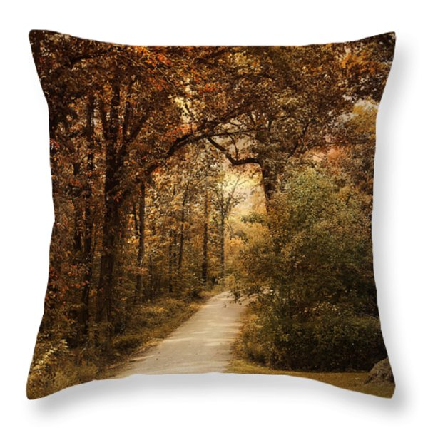 Morning Walk Throw Pillow by Jai Johnson