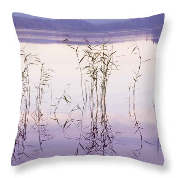 Morning Zen. Pearly Moments of Sunrise. Ladoga Lake. Northern Russia Throw Pillow by Jenny Rainbow