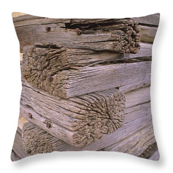 Morticed Joints On An Abandonded Log Throw Pillow by Gordon Wiltsie