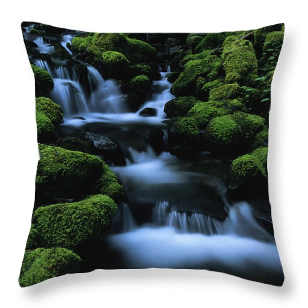 Moss-covered Rock Surrounding Throw Pillow by Melissa Farlow