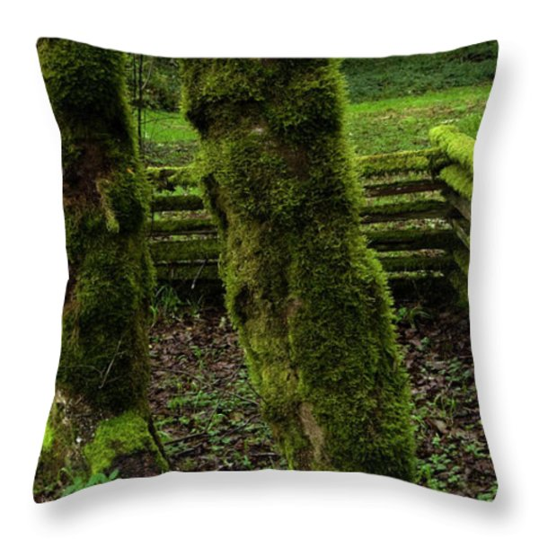 Mossy Fence Throw Pillow by Bob Christopher