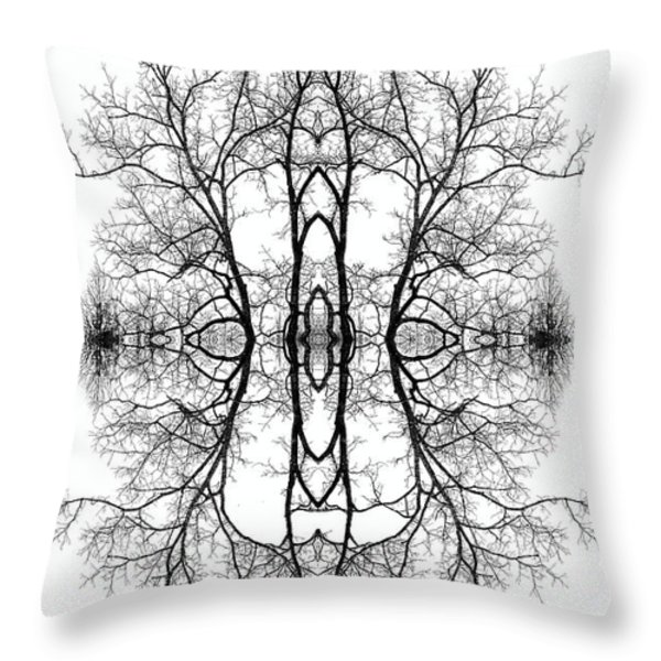 Mother Earth Throw Pillow by Debra and Dave Vanderlaan